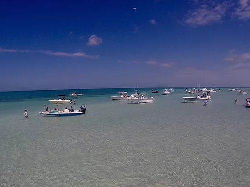 many white fishing boats on a sandbar